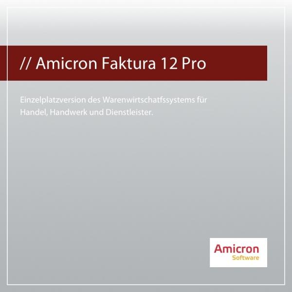 Amicron Faktura 12 Professional Version Einzelplatz