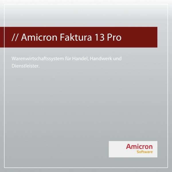 Amicron Faktura 13 Professional Version Einzelplatz